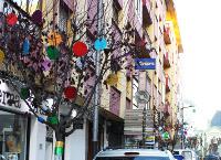 Un grupo de comerciantes de la ribadense Avenida de Galicia han decidido darle la bienvenida a la Navidad adornando parte de los árboles de esa calle. El 12 de diciembre habrá animación musical en la zona.
