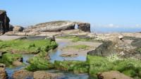 Cumplimos un año y renovamos la imagen de Faro Ocio Norte, la guía para disfrutar de A Mariña lucense.