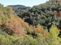 O grupo de montaña Pena Tallada, de Ribadeo, realizará unha ruta por Becerreá, a carón do río Donsal, o 16 de maio.
