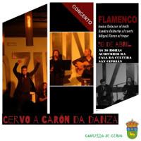 O auditorio da Casa da Cultura, en San Ciprián, acollerá este sábado, 30 de abril, un espectáculo de flamenco. Será ás oito da tarde.