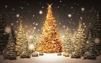 O Concello burelés convoca o I Certame Literario de Contos de Nadal. Os traballos de relato curto pódense presentar ata o 20 de decembro.