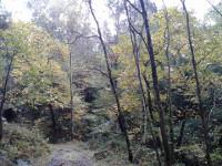 Os Sendeiros de Foz organiza unha ruta polos Oscos, en Asturias, o vindeiro 11 de decembro. A inscrición está aberta.