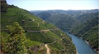 A ACD Xove realizará o 18 de setembro a ruta Ribeira Sacra do Miño, 16 quilómetros que discorrerán entre Pantón e O Saviñao.
