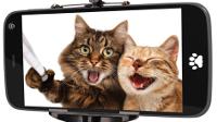 """O Concello de Cervo convoca o concurso """"Un selfie por amor"""" con motivo da celebración do día dos namorados. O fallo do xurado coñecerase o 14 de febreiro."""