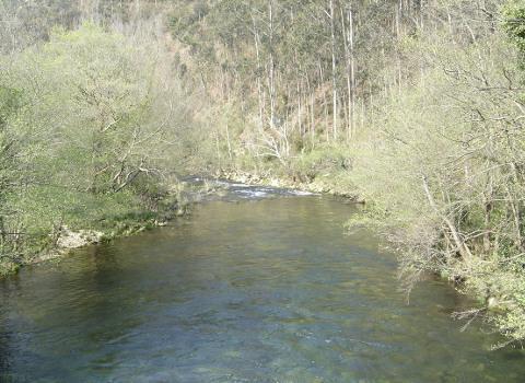 Nordés Faladora organiza unha camiñata a carón do río Sor e dúas inspeccións desta conca. A actividade terá lugar o 19 de marzo.