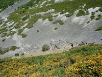 O grupo de montaña Pena Tallada, de Ribadeo, realizará un roteiro por Ibias (Asturias) o vindeiro 14 de marzo.